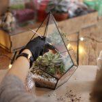 Florarium Workshop team building